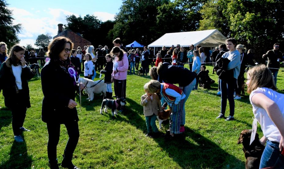 St Mary's Shaftesbury-Family Fun at the Dog Show 1