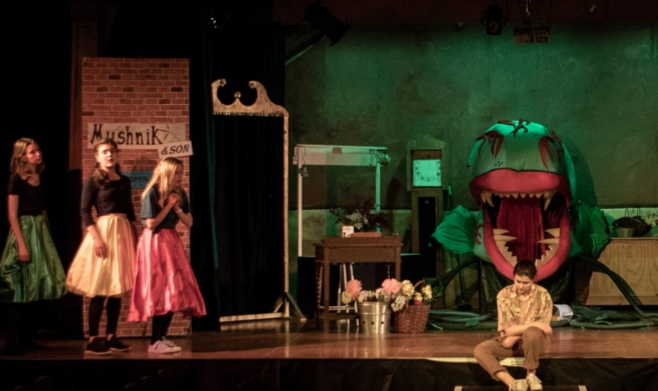 St Mary's Shaftesbury-Senior School Production of Little Shop of Horrors